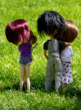Photo de fan-2-pullip