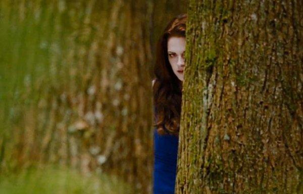 Quelques images de Twilight 4 chapitre 2