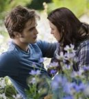 Photo de le-twilight-4