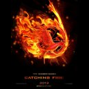 Photo de Catching-Fire-Sondages