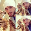 Le chat d'Omar