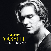 Amaury Vassili - Laisse-moi t'aimer