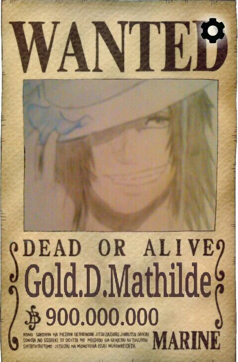 Avis de recherche de Portgas.D.Mathilde