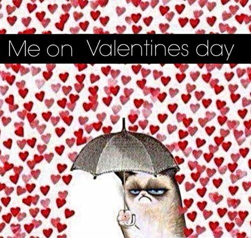 Bonne Saint Valentin ♥♥