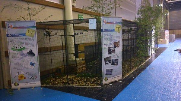 SALON DE L' AGRICULTURE    2015  Suite