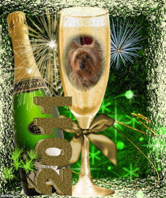 je vous souhaites?a tousmes amis?une bonne et heureuse annee 2011 ?et surtout une bonne sante ?on va boire les bulles?