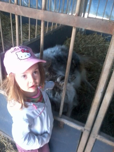 marina qui adore les animaux ma princesse que jaime !!