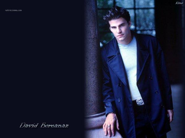 David Boreanaz / Angel <3 My Dream <3