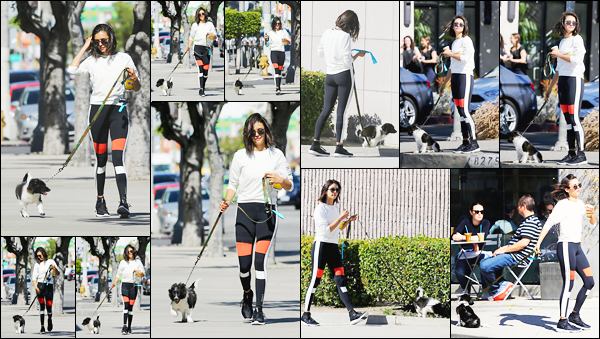 28/04/17: Nina Dobrev a été repéré lorsqu'elle faisait une petite balade avec sa petite Maverick dans West Hollywood. C'est dans une tenue de sport que nous retrouvons notre belle avec sa petite chienne trop choupinette, Maverick, en Californie ! Avis sur la tenue ?!