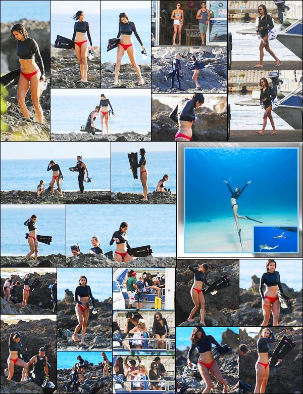 23/06/17: Nina Dobrev a été aperçue sur une plage « Honolulu » pour le tournage d'un documentaire sur les requins. Après un mois sans nouvelles de la miss, Nina a été vue sur une plage d'Hawaï, on devrait en savoir plus sur ce documentaire dans les jours à venir ...