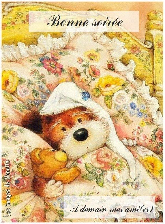Bonne nuit dormez bien