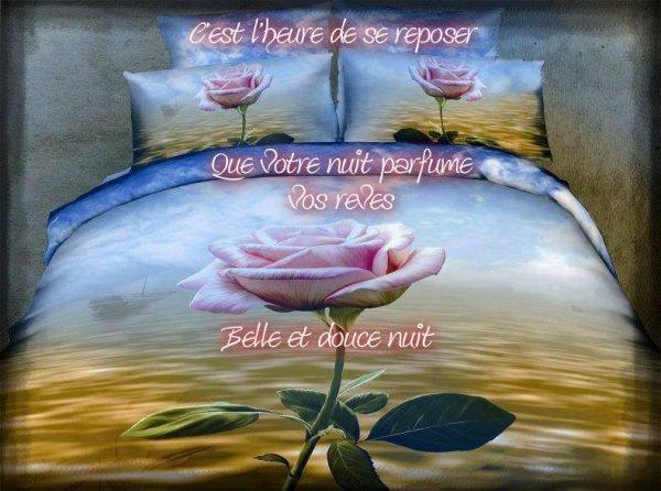Bonne nuit et bon week-end, bisous