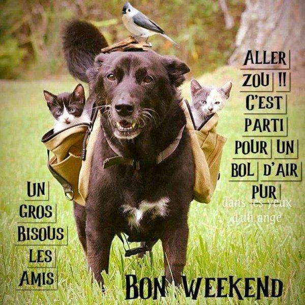 Bon vendredi et bon week-end à tous, bisous