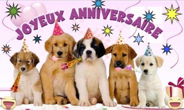 Tous les amis de Lipton lui souhaitent un heureux sixième anniversaire