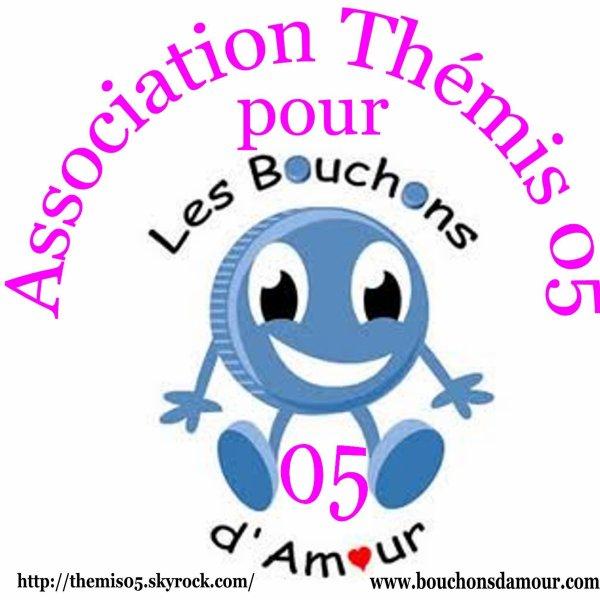 Présentation de l'Association Thémis 05