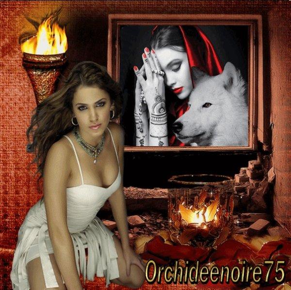 Kdo pr mon amie  Orchideenoire75