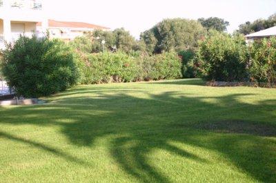 Le jardin des hesp rides antibes mon appart - Le jardin des hesperides ...