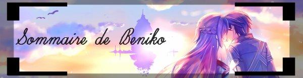 ♫  Bienvenue sur Beniko   ♫