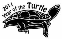 L'anée de la tortue