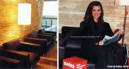 Cote de Pablo The Swiss HON Circle Senator Lounges the John F. Kennedy International Airport, New York