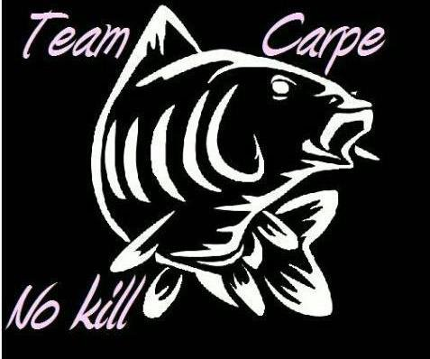TEAMCARPE NO KILL