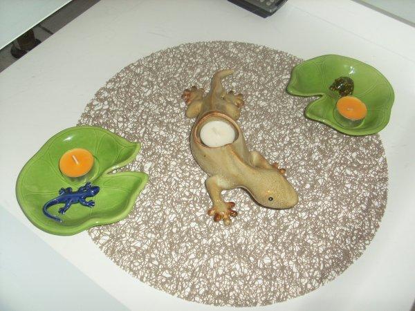 nénuphare et gecko pour réchaud