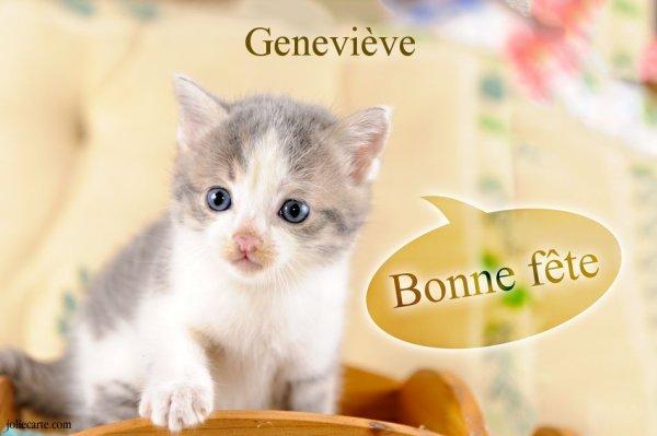 Bonne fête aux Geneviève et en particulier aux Geneviève amies de blog!