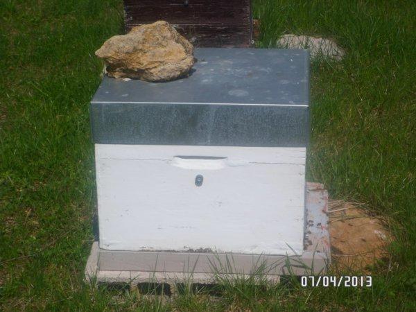 Le magnetisme et l'apiculture