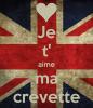 MA CREVETTE