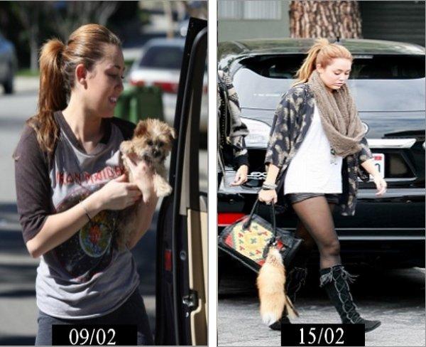 Elle l'adopte !   Miley avait pendant un moment addiction pour sa queu de cheval mais elle avait arrêté pendant un moment . On peut voir si dessous qu'elle en est toujours aussi fan . =)