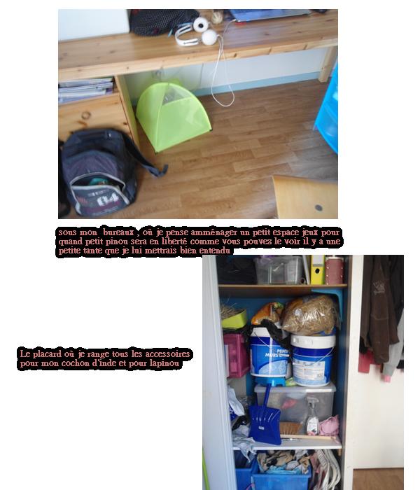 ma chambre , prochain environnement de mon lapinou