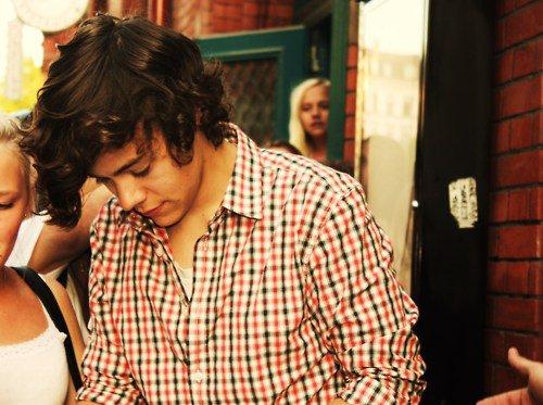 Chapitre 3 : « Harry Styles »