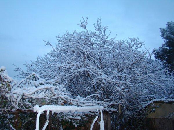 neige  a boulouris 2013