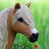Haras-des-coquelicots