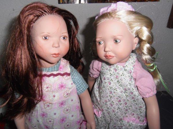 Célosie et Bergénie...