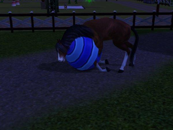Mon poney joue