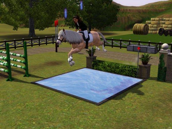 Entrainement de saut d'obstacle