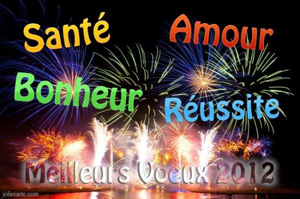 Bom Ano 2012 com Saude e Amor =  Heureuse Année 2012 avec Sante et Bonheur