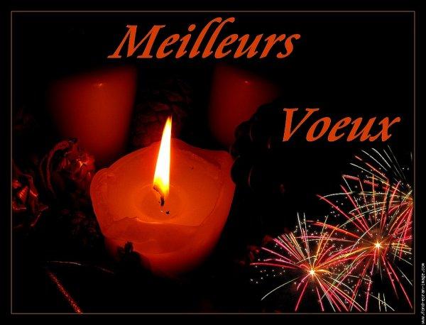 Bonne année 2013  = Bom Ano 2013