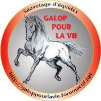 Galop Pour La Vie