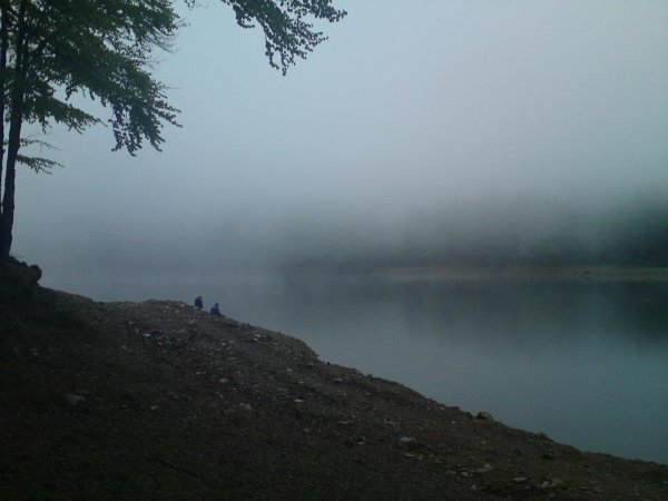 Vosges - étang sous le brouillard