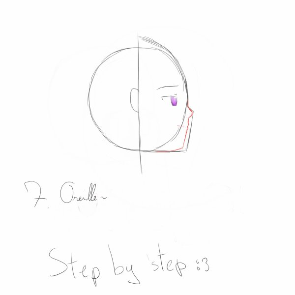 Step by step profils