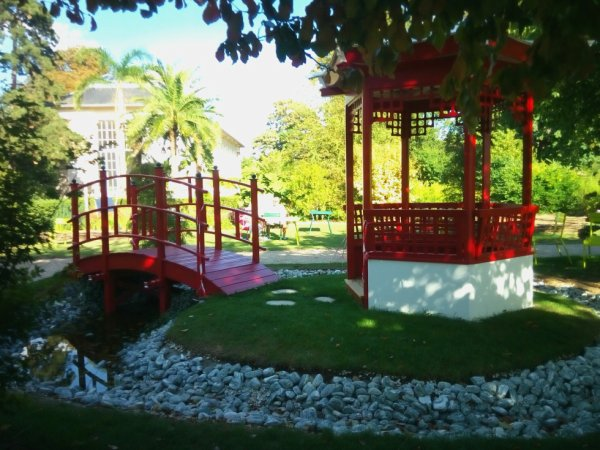 Un endroit que j'adore , au Jardin des Plantes ; Rouen .