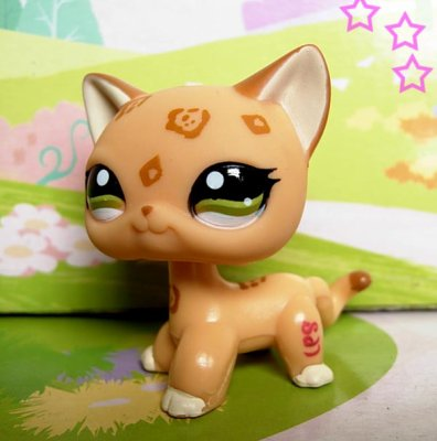Littlest petshop nouveau chat orange 1120 ton blog - Image petshop ...