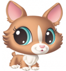 Photo de littlestpetshop14