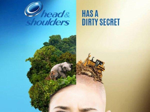 Déforestation by head&shoulders