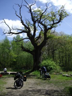 Week-end dans le Vexin (mai 2008)