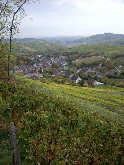 Week-End VTT à Cosne-sur-Loire, octobre 2008 (4/5)