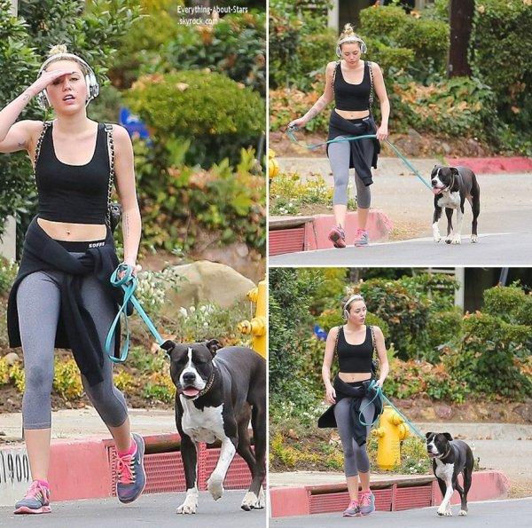 07/01/14: Miley Cyrus repérée en train de se promener avec son chien dans les rues de Los Angeles