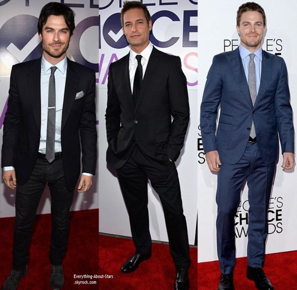 DOSSIER: PEOPLE CHOICE AWARDS 2014   Le Palmarés
